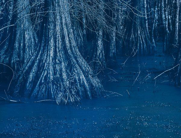 Cyanotype effect photoshop Emulsion 3